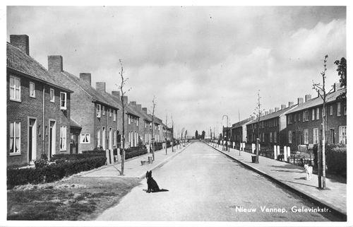 Gelevinkstraat_1952_zicht_vanaf_Venneperstraat